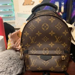 Louis Vuitton Palm Springs Mini